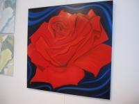 red-searose-130x130-cm