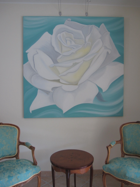 white-big-searose-150x150cm